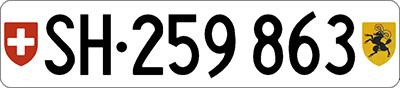 Auto im Schaffhausen verkaufen