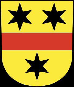 Autoankauf Rifferswil
