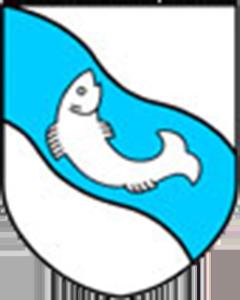 Autoankauf Rickenbach LU
