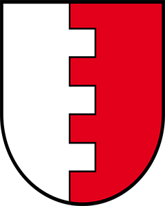 Autoankauf Schenkon