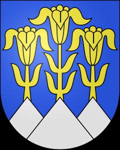 Autoankauf Blumenstein