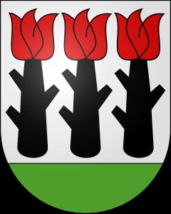 Autoankauf Niederried bei Kallnach
