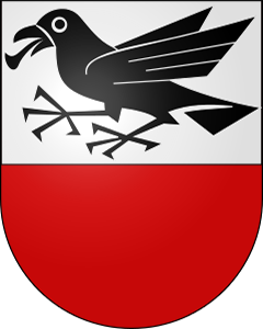 Autoankauf Rapperswil BE