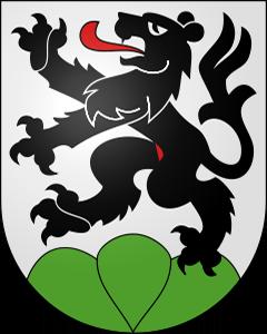 Autoankauf Schwarzenburg