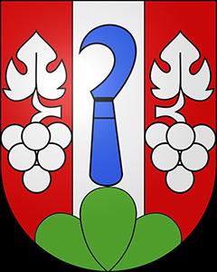 Autoankauf Tüscherz-Alfermée