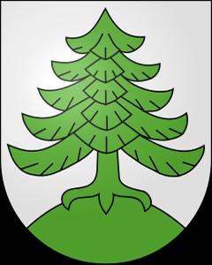 Autoankauf Busswil bei Melchnau