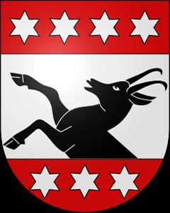Autoankauf Grindelwald