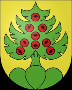 Autoankauf Heimiswil
