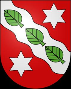 Autoankauf Horrenbach-Buchen