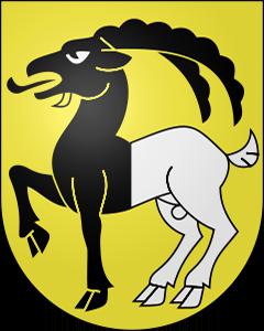 Autoankauf Iseltwald