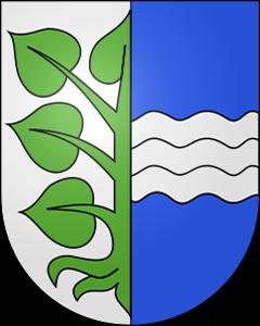Autoankauf Kriechenwil