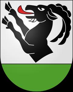 Autoankauf Niederried bei Interlaken