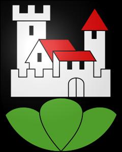 Autoankauf Oberburg