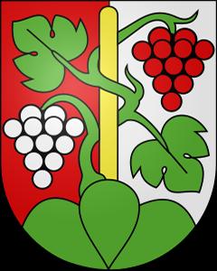 Autoankauf Oberhofen am Thunersee