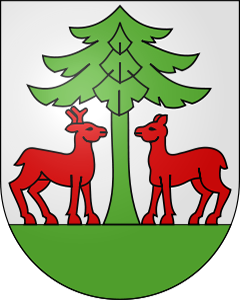 Autoankauf Oberlangenegg