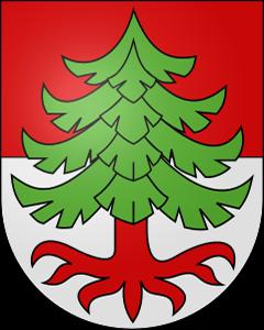 Autoankauf Ochlenberg