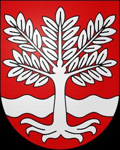 Autoankauf Oeschenbach
