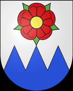 Autoankauf Rumisberg