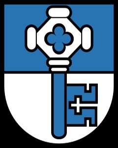 Autoankauf Wangenried