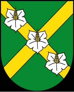 Autoankauf Jorat-Mézières