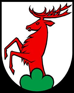 Autoankauf Ammerswil
