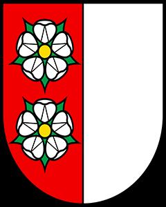 Autoankauf Auenstein