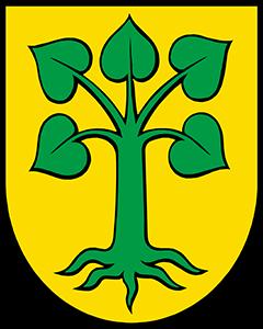 Autoankauf Beinwil (Freiamt)
