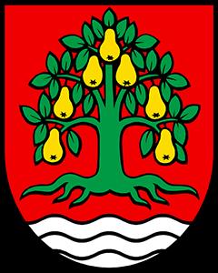 Autoankauf Birrhard