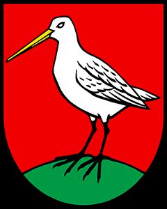 Autoankauf Boniswil