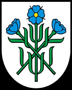 Autoankauf Oberflachs