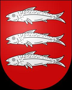 Autoankauf Treytorrens (Payerne)