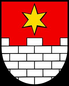Autoankauf Eggenwil