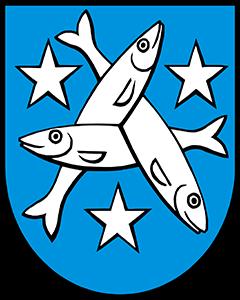 Autoankauf Egliswil