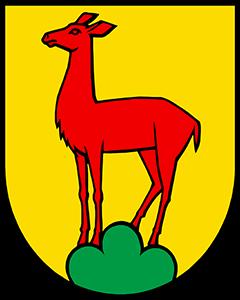 Autoankauf Gipf-Oberfrick