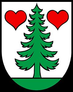 Autoankauf Gontenschwil