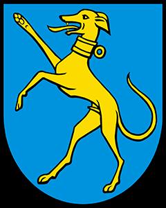 Autoankauf Hunzenschwil