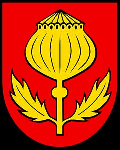 Autoankauf Mägenwil