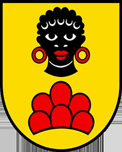 Autoankauf Möriken-Wildegg