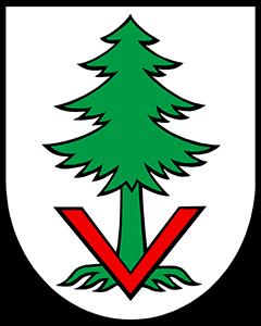 Autoankauf Vordemwald
