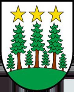 Autoankauf Oberwald