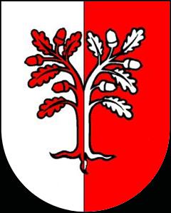 Autoankauf Davesco-Soragno
