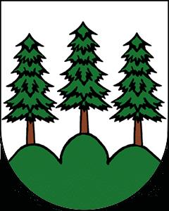 Autoankauf Ried-Brig