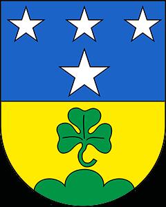 Autoankauf Saint-Niklaus