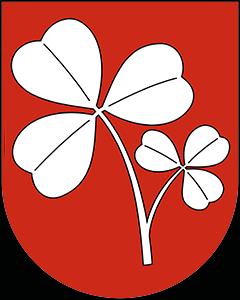 Autoankauf Saxon