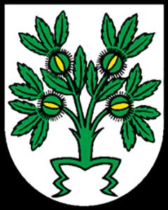 Autoankauf Breno