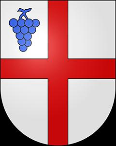 Autoankauf Cavigliano