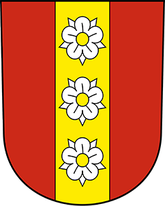 Autoankauf Buchegg