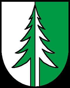 Autoankauf Heinrichswil