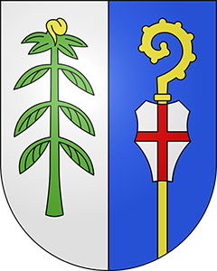 Autoankauf Mezzovico-Vira