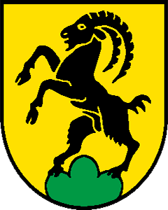 Autoankauf Steinhof